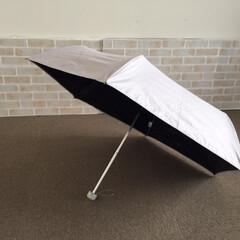 私のお気に入り/日傘/折り畳みタイプ/ナチュラルキッチン/わたしのお気に入り 私のお気に入り。 日傘が手放せませんね。…(1枚目)