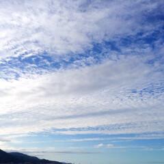 今日の空/雲/晴れ/天気/風景 今日の空。 流れるような雲ですね。 晴れ…(1枚目)
