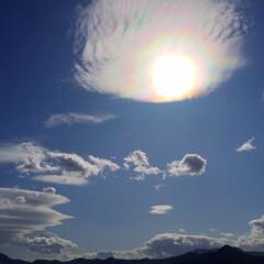 今日の空/太陽/雲/天気/妖艶/自然/... 今日の空。 天気が良かったのでパチリ。 …