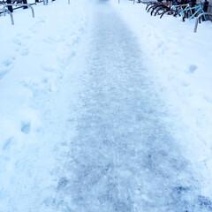 冬の1枚/冬の風景/氷の道/ケガをしないように/冬 冬の風景。 氷の道を歩くのは大変です。 …