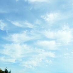 風景/景色/空/雲 雲がおしゃべりしているような空をパチリ!…