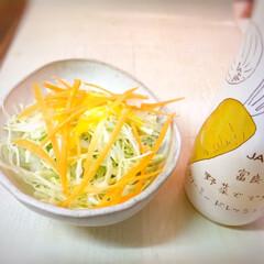 幸せおうちごはん。/富良野/野菜/サラダ/にんじんのドレッシング/おうちごはん 幸せおうちごはん。 にんじんのドレッシン…(1枚目)