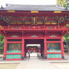旅の景色/根津神社/下町散策/旅 旅の景色。 根津神社にて。下町散策で訪れ…