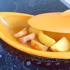 調理グッズ/シリコンスチーマー/フライドポテト/下茹で完了 フライドポテトが食べたい! ということで…