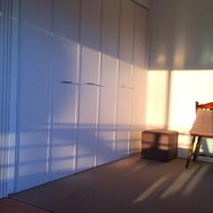 今日の夕日/家の中/西日/長い時間明るい 今日の夕日。 実は、家の中にも夕日が。 …