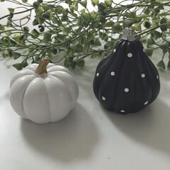 ハロウィン/Seria/ハロウィングッズ/モノトーン/100均/セリア/... セリアでおしゃれなハロウィンのかぼちゃを…