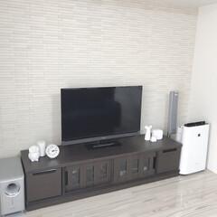 シンプルライフ/シンプル/リビング リビングのテレビボード