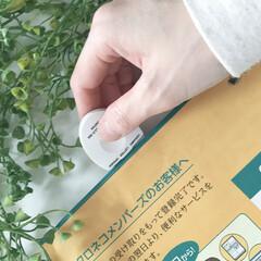 レターオープナー/文房具/モノトーン/シンプル/おしゃれ/便利グッズ シンプルなレターオープナーです。 封筒を…(2枚目)