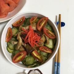 そうめん2019 夏野菜たっぷりのせ素麺🍅 きゅうりは酢の…