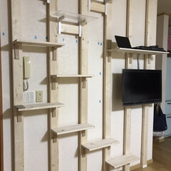 壁かけテレビとキャットステップ/DIY収納 (4枚目)