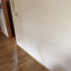 壁かけテレビとキャットステップ/DIY収納 (2枚目)