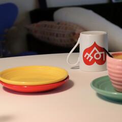 フォスフレイクス fossflakes コンフォートUセミロング 88x135cm U字型体サポート抱き枕(抱き枕)を使ったクチコミ「朝からお気に入りのカップソーサーでコーヒ…」