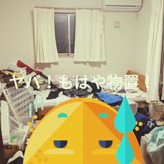 掃除 これはヤバいくらい部屋がきたなかった。む…