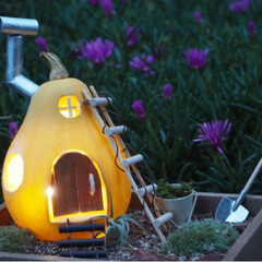 箱庭風/箱庭/庭/ハロウィン/カボチャ/かぼちゃ/... この前のかぼちゃハウスを庭で撮ってみまし…