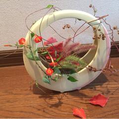 小さな幸せ/季節の移り変わり/花のある暮らし/ハンドメイド/住まい/暮らし/...