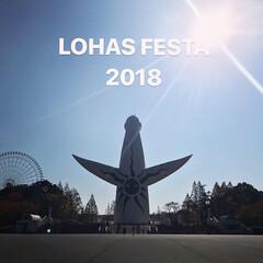 青空/大阪ロハスフェスタ/万博記念公園/太陽の塔/秋/風景 大阪ロハスフェスタの会場の万博記念公園に…