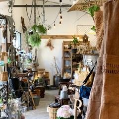 ガーデン雑貨/雑貨屋さん/グリーン/キッチン雑貨/雑貨/DIY/... おはようございます♬ 大阪の和泉市にある…