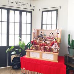 3月/リビングインテリア/窓枠DIY/リビング/ひな祭り/ひな人形/... ここ何年かはリビングの机にひな人形出して…(1枚目)