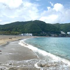 景色最高/徳島県/ウミガメ/うみがめ/子供とお出かけ/おでかけ/... GWで徳島県のうみがめの産卵で有名な大浜…(2枚目)