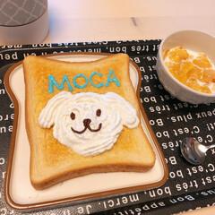 愛犬/ワンコ/トースト/朝ごはん/暮らし おはようございます(*´꒳`*)  今朝…