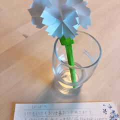 父の日/奈良へ/モカも一緒に/家族で/お出かけ/海鮮/... 日曜日は父の日でしたね。  アップが送れ…