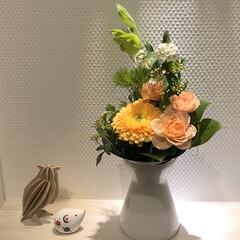 青山フラワーマーケット/おはな お花は心の癒し♩