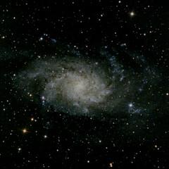 白鳥座/M33 星座の写真、 京都の親戚から送ってもらっ…