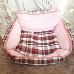ピンク ボランティアさんから頂いた猫ベッドです。…
