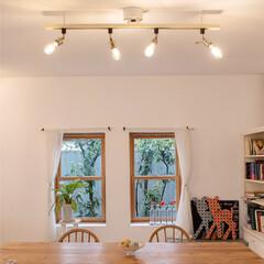 ウォールナット/天然木家具/ライティングレール/ダクトレール/ペンダントライト/シーリングライト4灯/... お部屋の照明は もっと、たのしもう♪  …(6枚目)