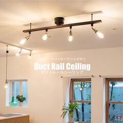 ウォールナット/天然木家具/ライティングレール/ダクトレール/ペンダントライト/シーリングライト4灯/... お部屋の照明は もっと、たのしもう♪  …(1枚目)