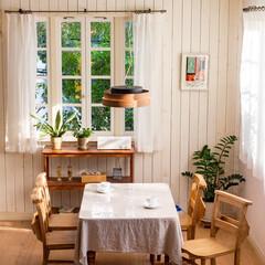 ノルディック/木目/新生活/昼白色/電球色/調色/... ナチュラルな天然木が お部屋を優しい雰囲…(1枚目)