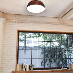 調色/調光/天井照明/照明/LEDシーリングライト/LED/... 選べる6種類の木枠♪  一般的なドーム型…