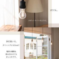 ソケット/ゴールドインテリア/レトロ/モノトーン/おしゃれ/シンプル/... 電球のデザインを楽しめる💡  アンティー…(4枚目)