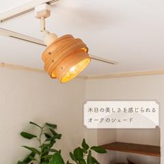 カバー/ライト/ランプシェード/ペンダントライト/シーリングライト/机/... ふわっと広がる 優しいあかり  木の風合…(3枚目)
