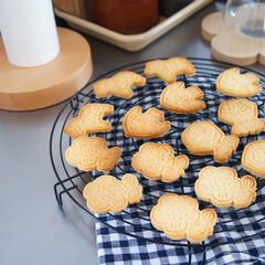 おうち時間/cotta/北欧風/クッキー型/クッキー/キッチン/... cottaで買った北欧風のクッキー型がか…