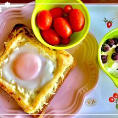 ワンプレート朝ごはん/グリルパン/一人暮らし 今日もグリルパンでマョ卵トースト(°▽°)