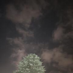 夜空/月 増税初日の札幌のお月様(1枚目)