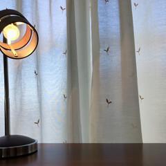 間接照明/照明器具/オシャレ/ルームライト/ニトリ ニトリのデスクライト◎ 暖かい色味の光が…(1枚目)