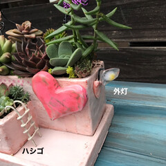 リメ鉢/DIY/多肉植物 こんなハートワイヤーも出来るって 知らせ…(3枚目)