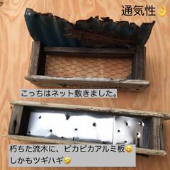 流木/ジャンク/プランター/DIY/多肉植物 お休み中に作ったもの(6/27) 流木で…(5枚目)