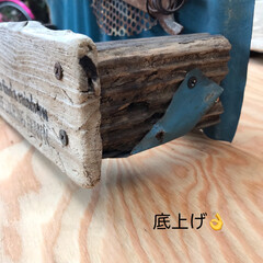 流木/ジャンク/プランター/DIY/多肉植物 お休み中に作ったもの(6/27) 流木で…(3枚目)