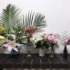ドライフラワー初挑戦 お花をたくさん頂きました! ドライにでき…