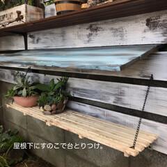 多肉棚 朝からDIY🤗  下の花壇→地植え用にと…(5枚目)
