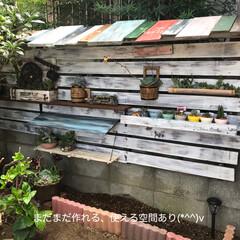 多肉棚 朝からDIY🤗  下の花壇→地植え用にと…(7枚目)