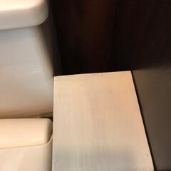クラフトテープ/隙間家具/100均/DIY/収納/住まい/... 聞いてくれますかぁ💦 トイレの女子コーナ…(5枚目)