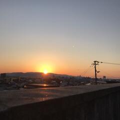 夕日とお花 今日の夕日と…(9枚目)