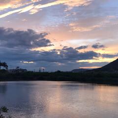 夕陽 今日の夕陽。 どんどん綺麗になってくるの…(4枚目)