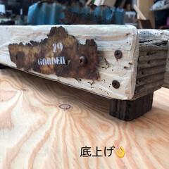流木/ジャンク/プランター/DIY/多肉植物 お休み中に作ったもの(6/27) 流木で…(4枚目)