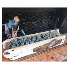 流木/ジャンク/プランター/DIY/多肉植物 お休み中に作ったもの(6/27) 流木で…(7枚目)