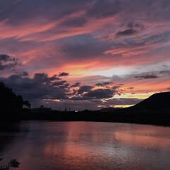 夕陽 今日の夕陽。 どんどん綺麗になってくるの…